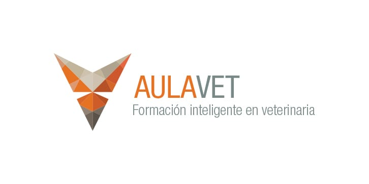 made-in-you-identidad_aulavet_1