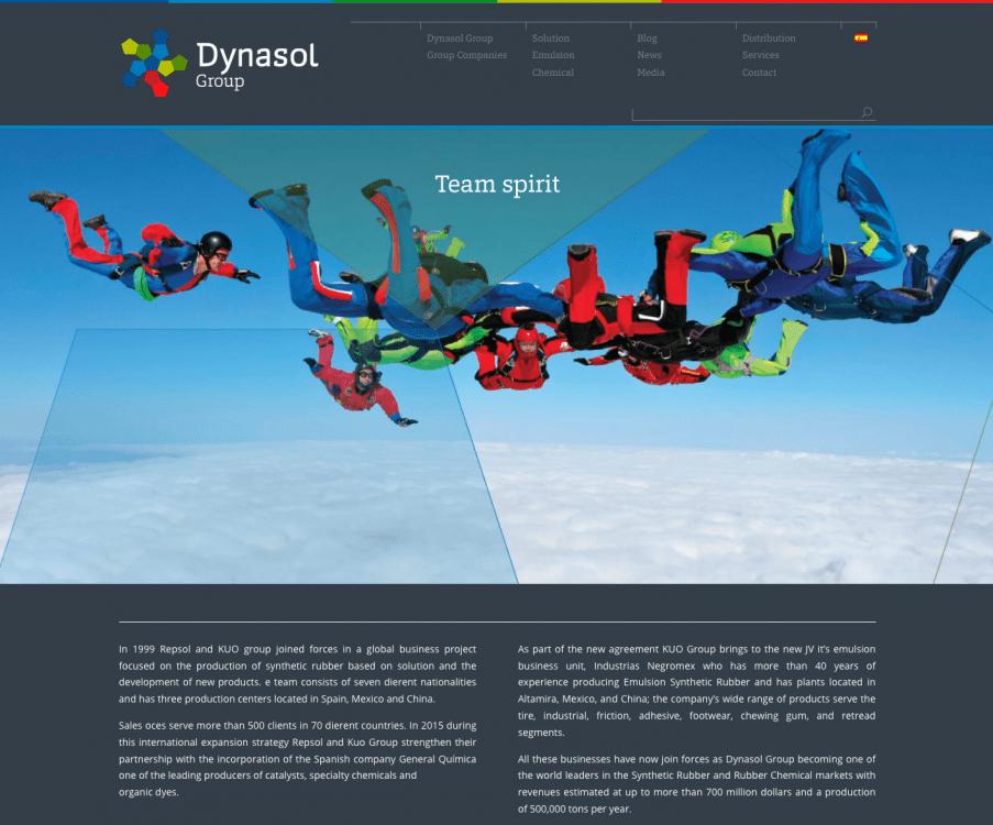 Web Grupo Dynasol
